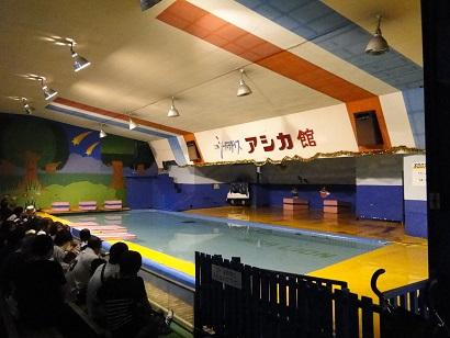 二見水族館04.jpg