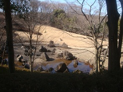 四季の森09.jpg