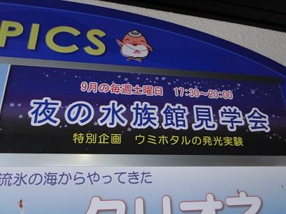 浅虫水族館06.jpg