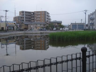 芳賀池公園009.jpg