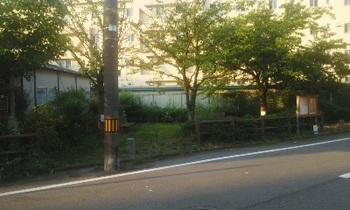 あふち公園001.jpg