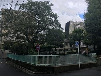 いちょう公園001.jpg