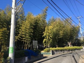 おくらやまの森緑地001.jpg