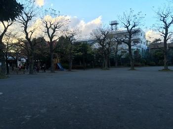 かわばた公園002.jpg