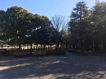 くつろぎの家公園002.jpg