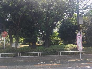 さわやか公園001.jpg