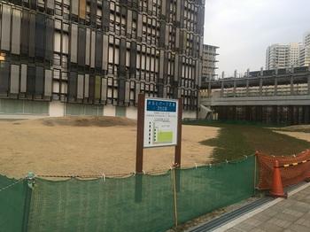 みなとパーク芝浦芝生広場001.jpg