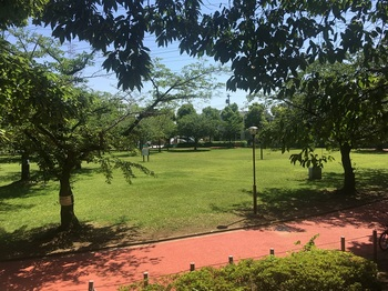 一ツ家第一公園011.jpg