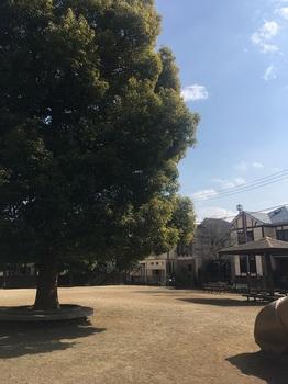 中ふれあい公園003.jpg