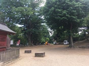 初雁公園001.jpg