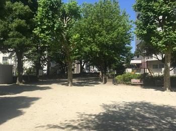 加青公園003.jpg