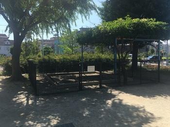 加青公園012.jpg