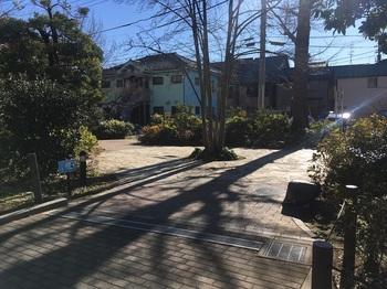 南田中いちょう並木公園003.jpg
