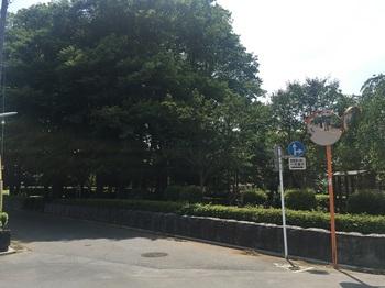 吉祥寺北町公園001.jpg
