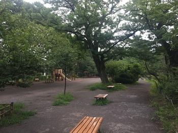 善福寺公園013.jpg