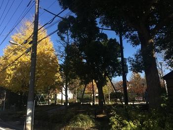 大杉五丁目児童遊園001.jpg