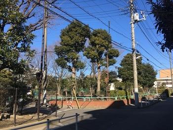 小菅三丁目公園001.jpg