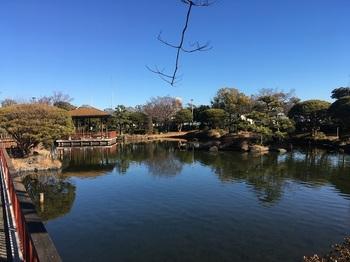 小菅東スポーツ公園005.jpg