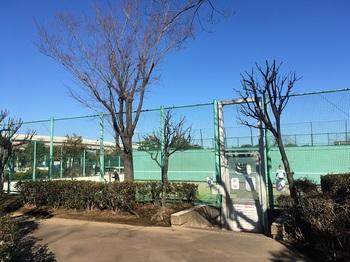 小菅東スポーツ公園015.jpg
