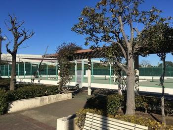 小菅東スポーツ公園016.jpg