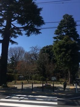 成城みつ池緑地001.jpg