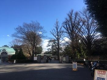 新宿御苑001.jpg