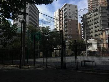 朝日公園005.jpg