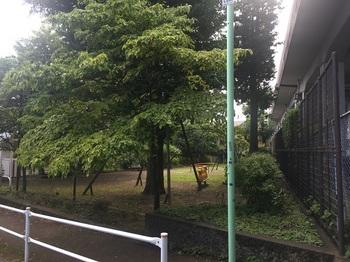 本田児童公園001.jpg