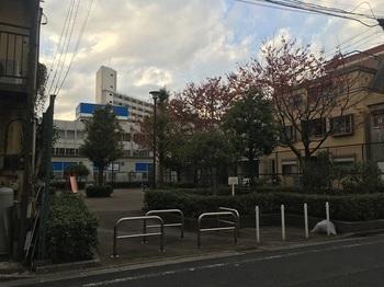 東立石あおぞら児童遊園001.jpg