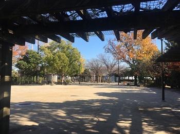 松本ふじの花公園002.jpg