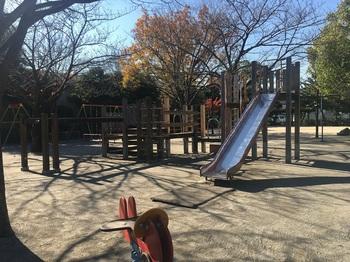 松本ふじの花公園012.jpg