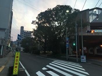 桜町公園001.jpg