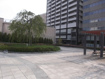 水戸駅南口さくら東公園002.jpg