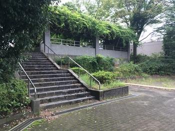 溜池公園006.jpg