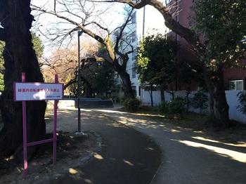 玉川上水旧水路緑道(大山町地区)002.jpg