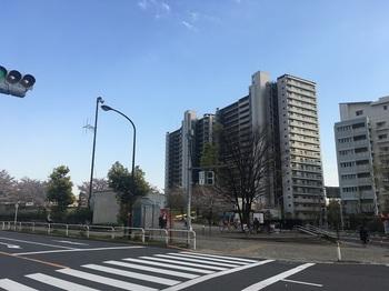 瑞光橋公園001.jpg