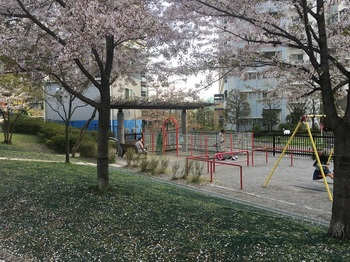 瑞光橋公園003.jpg