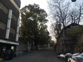 生玉公園001.jpg