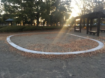 羽生中央公園009.jpg