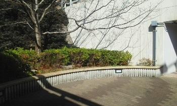 芝浦西運河緑地002.jpg