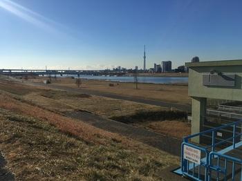 荒川小菅緑地公園001.jpg