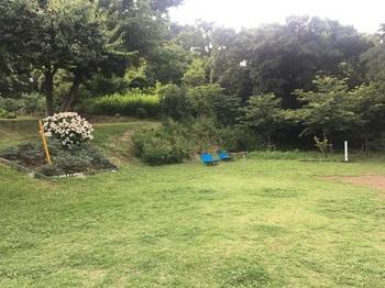 菅生が丘特別緑地003.jpg