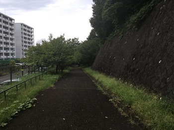 蒲生字公園003.jpg