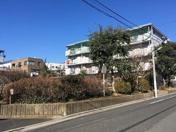 西亀有二丁目アパート001.jpg