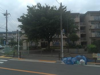 西亀青児童遊園001.jpg