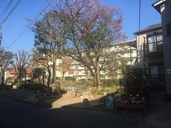 西綾瀬三丁目児童遊園001.jpg
