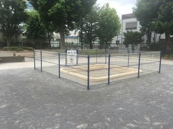 西青戸公園005.jpg