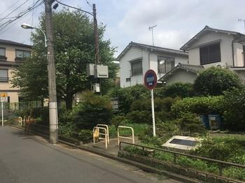 赤塚二丁目緑地001.jpg