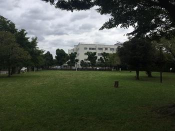 辰沼公園004.jpg