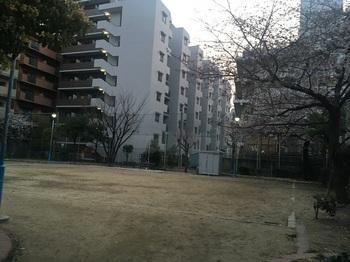道仁公園002.jpg